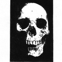 Skull with Numbers